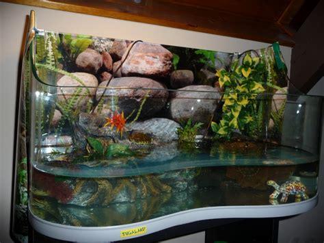 achat aquarium pas cher achat aquarium tortue d eau