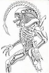 Alien Xenomorph Coloring Predator Vs Deviantart Adult Drawing Aliens Arte Tattoo Colorare Printable Drawings Comission Mandala Dessin Coloriage Maternelle Terminator sketch template