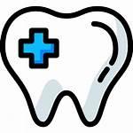 Dentist Dental Medical Icon Caries Premolar Tooth