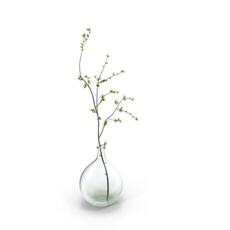 Vase With Branches by Vase With Single Branch Png Images Psds For