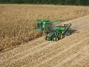 New Harvest Photos - Noland Farms Inc.Noland Farms Inc.