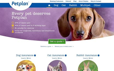 Pet partners insurance on seo goggle. Best Pet Insurance For Dogs Lifetime Cover - PetsWall