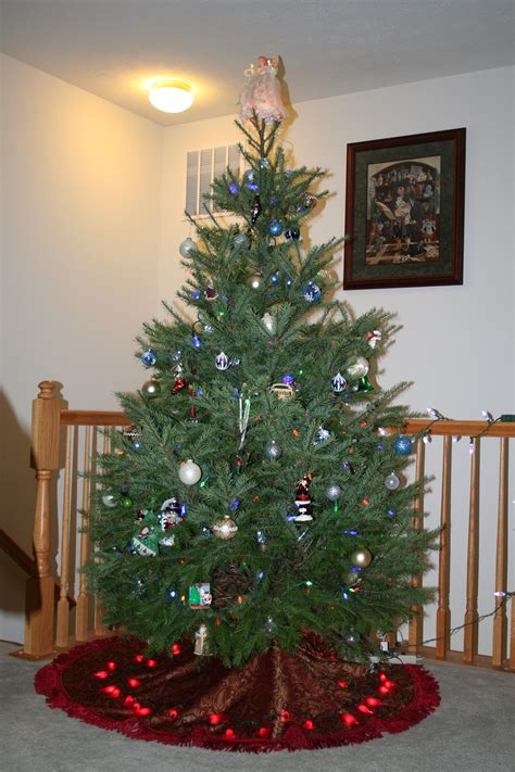 small live status on christmas live trees potted photo albums fabulous homes interior design ideas