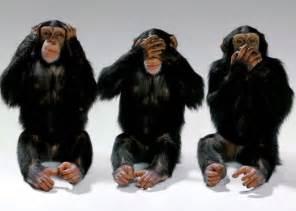 Mirroring Psychology Definition by Body Language Success Amp Emotional Intelligence Nonverbal