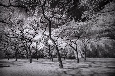 infrared photography invisible world long exposure