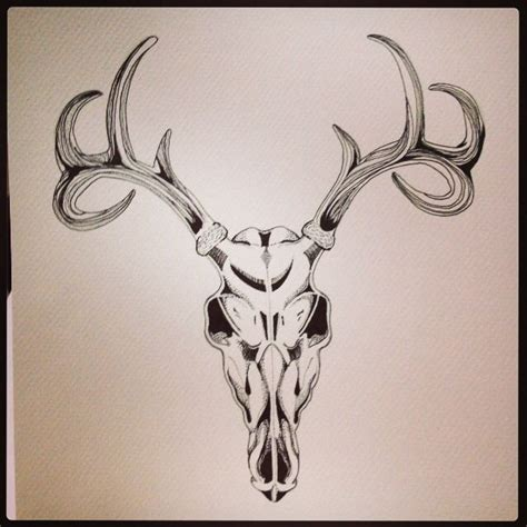 Deer Skull Drawing Done Ink Pen Art For Winners