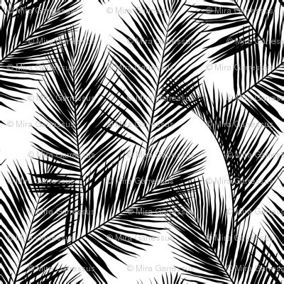 palm leaves black  white small silhuettes tropical