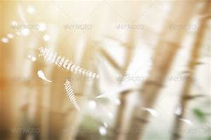 Background With Falling Feathers by Wutip | GraphicRiver