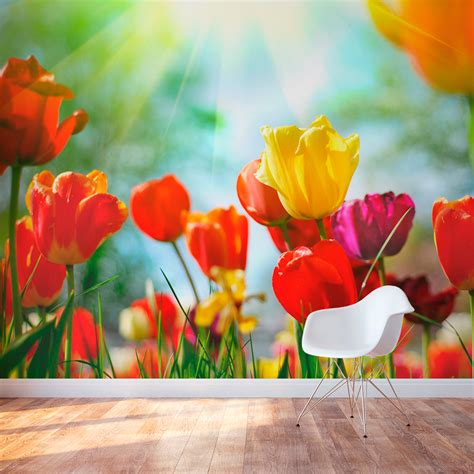 tulip field wallpaper colorful tulips wall mural wallums
