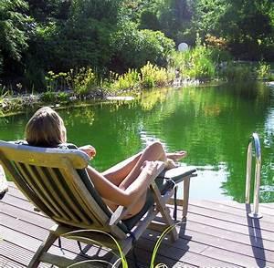 Schwimmteich Im Garten : swimmingpool oder badeteich vorteile und nachteile der l sungen welt ~ Sanjose-hotels-ca.com Haus und Dekorationen