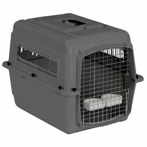 petmate sky kennel medium vetdepotcom With petmate medium dog crate