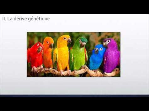 Modification De by Cours Modification De La Biodiversit 233 Au Cours Du Temps