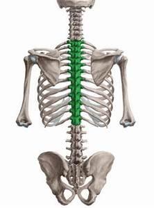 Какие есть эффективные уколы от остеохондроза шейного отдела