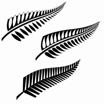 Fern Tattoo Silver Designs Maori Tattoos Clipart