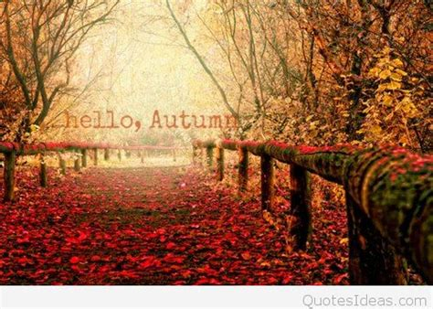 autumn pictures wallpapere cards sayings hd