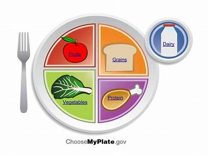 Healthy Myplate Plate Diet Planner Using Groups
