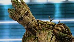 'Guardians Of The Galaxy' Director Reveals Groot Actually ...
