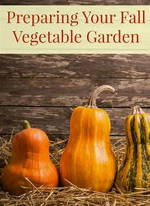 Gardening Tips To Help You Prepare Your Fall Vegetable Garden  Fall