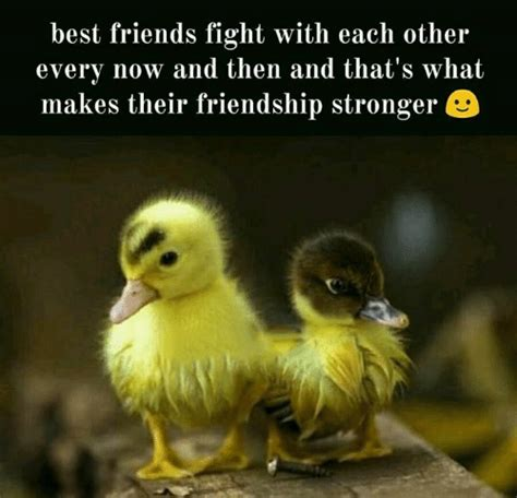 Memes Friendship - best friend meme funny friend memes