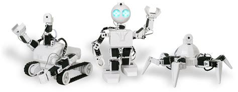 robotics programming  distance learning  home