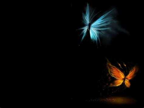 3d Wallpapers Butterfly by 3d Butterfly Wallpapers Wallpaper Cave