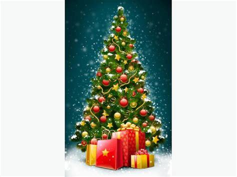 christmas tree removal victoria city victoria mobile