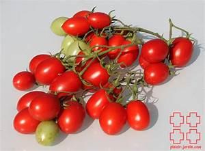 Plant Tomate Cerise : e2 les tomates cerises plaisir ~ Melissatoandfro.com Idées de Décoration