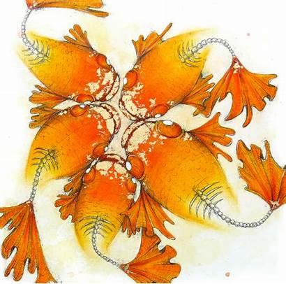 Pastel Chalk Goldfish Ocean Darksilenceinsuburbia Ink