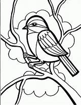 Coloring Bird Pages Crow Birds Printable Colouring Sheets Adults Cardinal Pattern sketch template