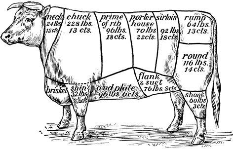 cuts  beef clipart