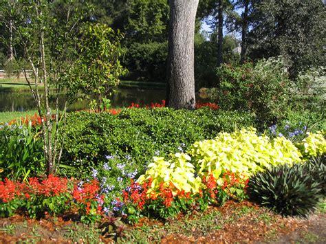 summer flower garden summer garden flowers photograph summer flower beds add color
