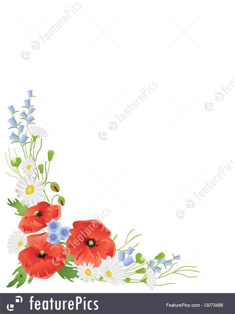 wildflower border illustration