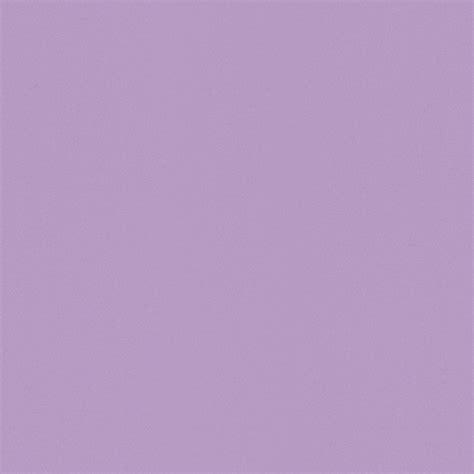 vliestapete rasch uni lila wallpaper color