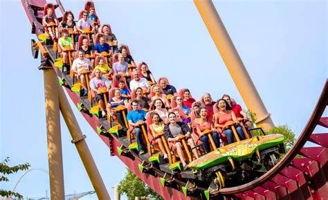 best water filters for water the top roller coasters at island