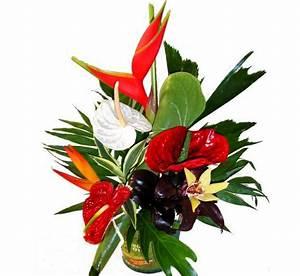 les fleurs de noel poinsettia jacinthes fleurs With chambre bébé design avec composition de fleurs exotiques