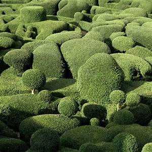 Notcotorg for Marqueyssac topiary gardens philippe jarrigeon