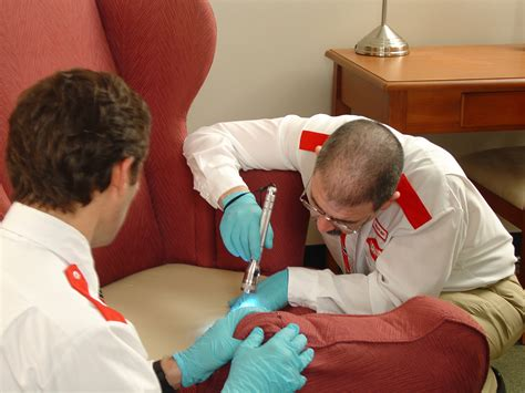 Bedbug Organic Cures Natural Homeopathic  Natural Bedbug. Tuberous Breast Deformity Ice Drug Addiction. Atlanta Community Colleges With Housing. Automobile Technician Resume. Irs Back Taxes Settlement Banks In Buford Ga. Project Management Software Applications. Why Renewable Energy Is Good. Cedarcrest Nursing Home Register An Llc In Nj. How To Design Your Business Card