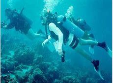 >EXOTIC TOURS BRAZIL Scuba Diving Trips in Rio de