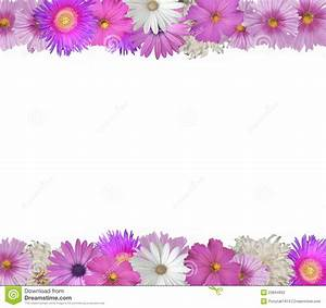 Border Of Spring And Summer Flowers Stock Image - Image ...