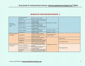 Mnemonics For Muscles Of Forearm Forearm Muscle Mnemonics