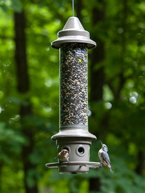 birds unlimited bird feeders 11 best advanced pole system images on