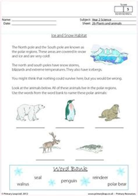 physics of snowboarding worksheet 1000 images about science printable worksheets