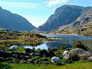 The Ring Of Kerry Wander Ireland