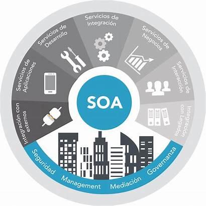 Services Soa Integration Application Enterprise