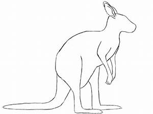 How To Draw A Kangaroo - Draw Central