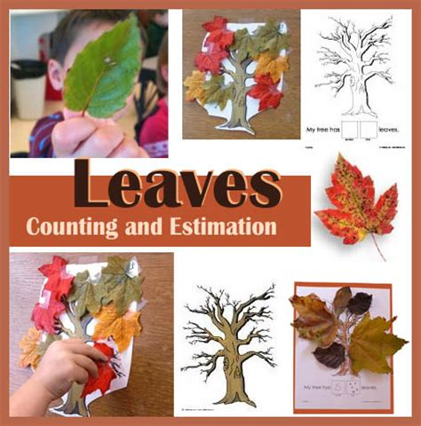 fall autumn and leaves preschool activities and crafts 929 | LeavesCntEstKS 0