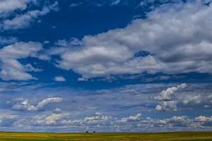 Land, Of, Living, Skies