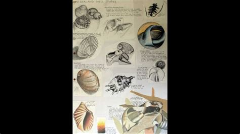 gcse art sketchbook ideas   experienced teacher