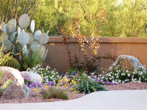 easy care plants for landscaping watters garden center low maintenance plants for easy care landscaping
