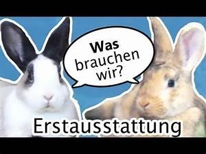 Was Braucht Man Für Alexa : kaninchen erstausstattung was braucht man f r den start ~ Jslefanu.com Haus und Dekorationen